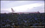photo of Douglas DC-8-54F CF-TJM